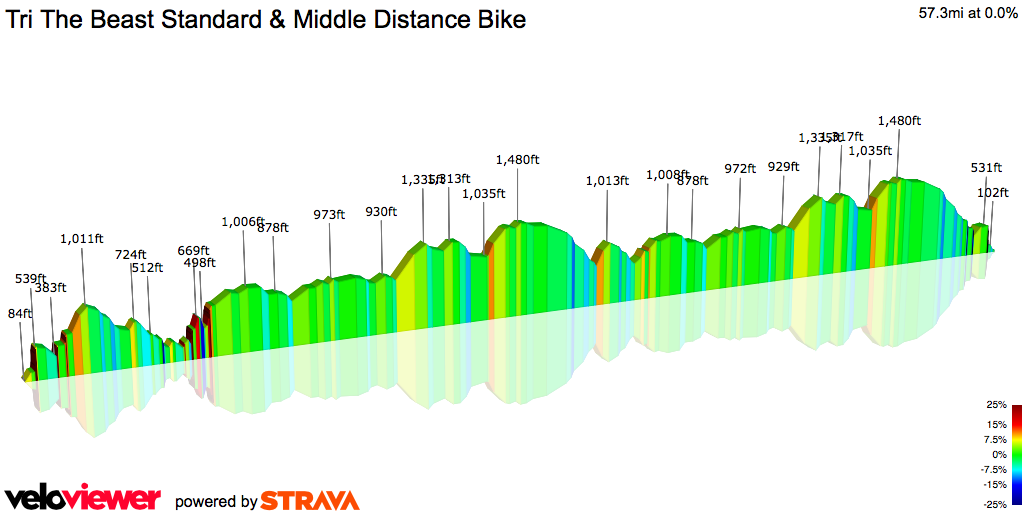 2D Elevation profile image for Tri The Beast Standard & Middle Distance Bike