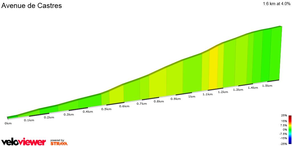 2D Elevation profile image for Avenue de Castres