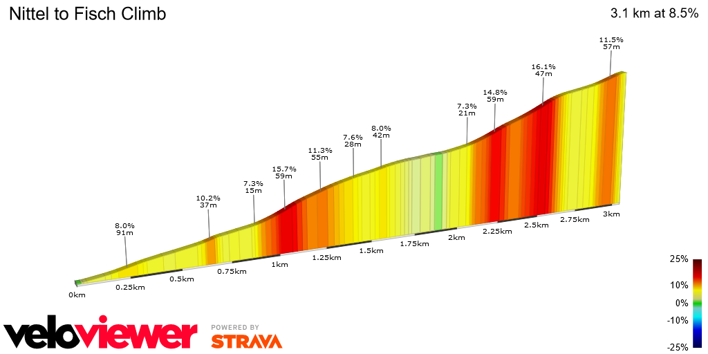 2D Elevation profile image for Nittel to Fisch Climb