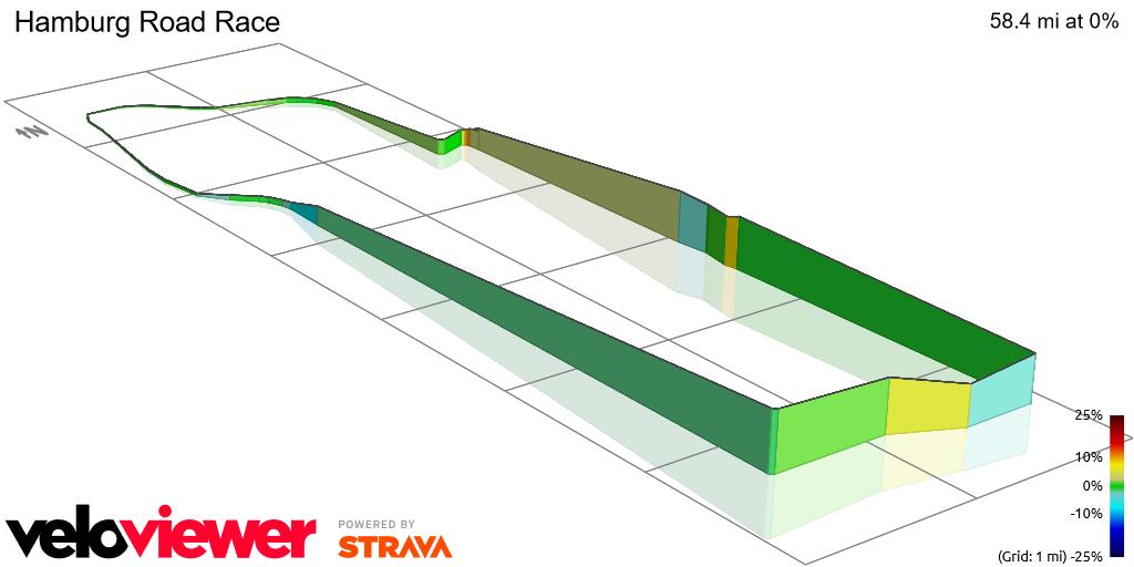 3D Elevation profile image for Hamburg Road Race