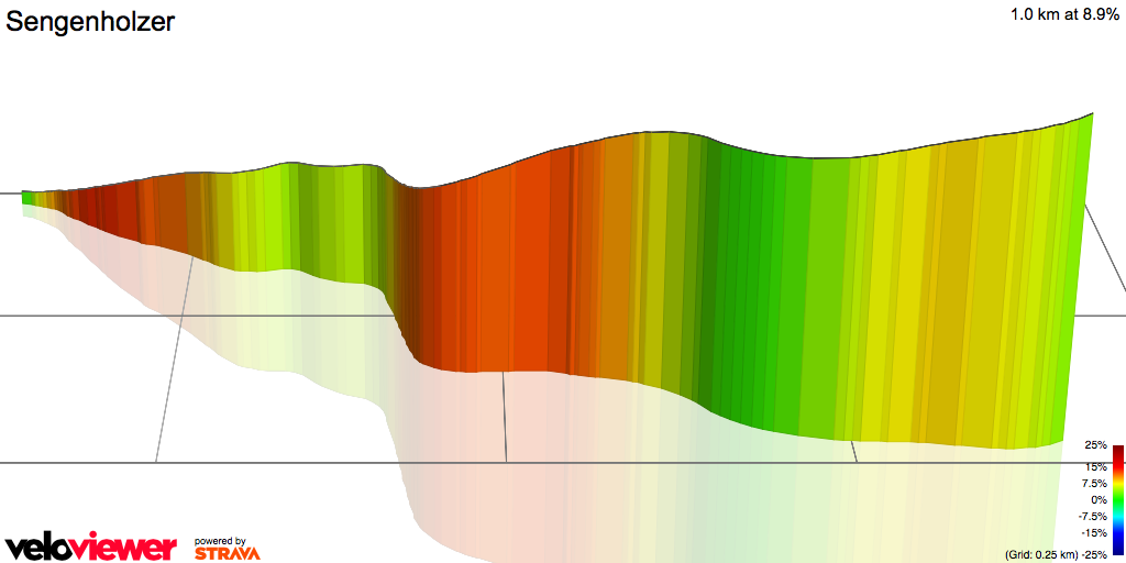 3D Elevation profile image for Sengenholzer