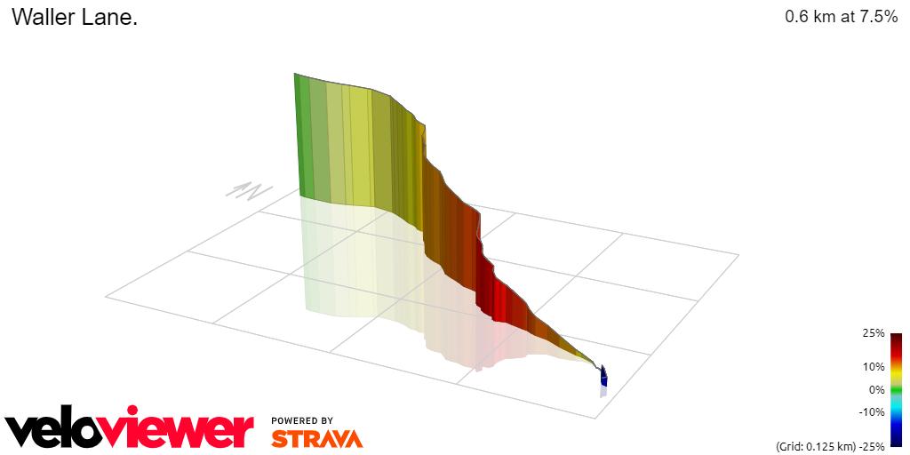 3D Elevation profile image for Waller Lane.