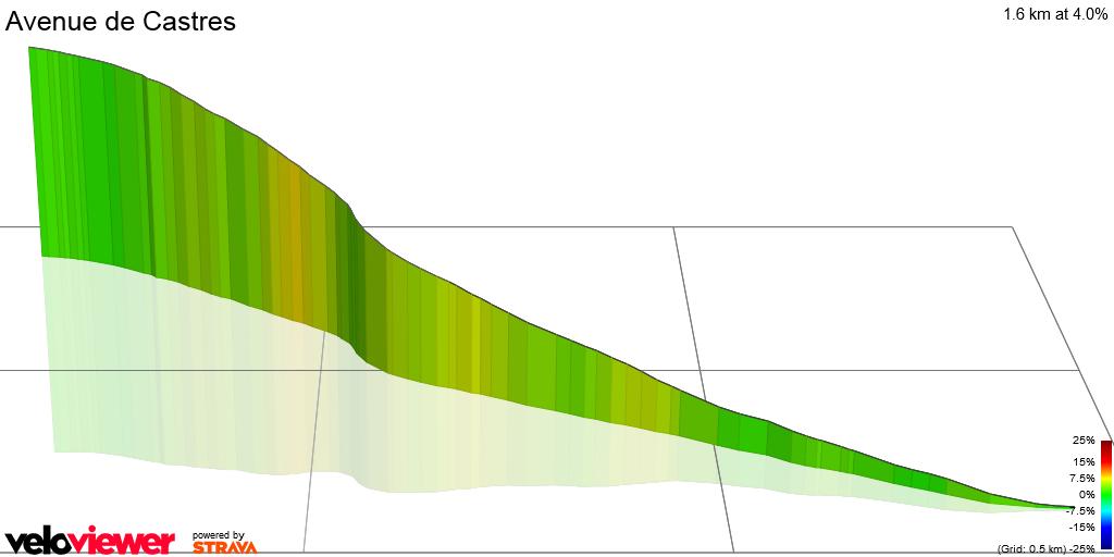 3D Elevation profile image for Avenue de Castres