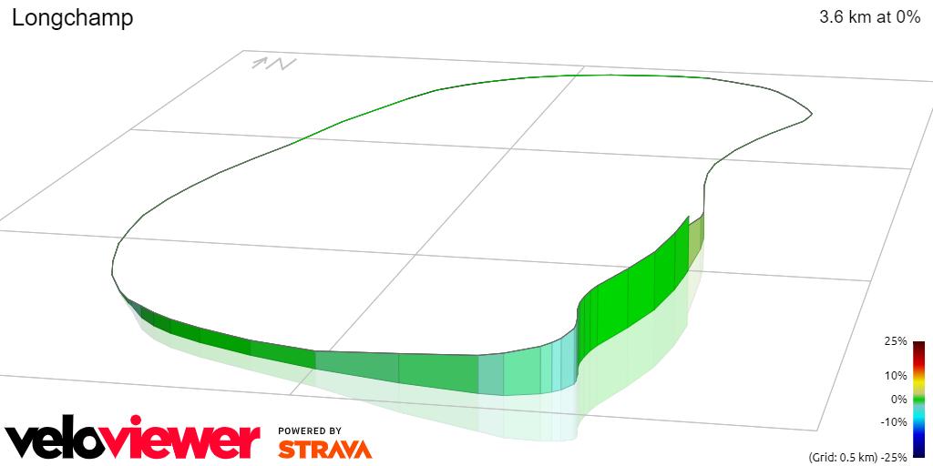3D Elevation profile image for Longchamp