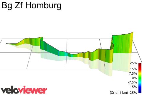 3D Elevation profile image for Bg Zf Homburg
