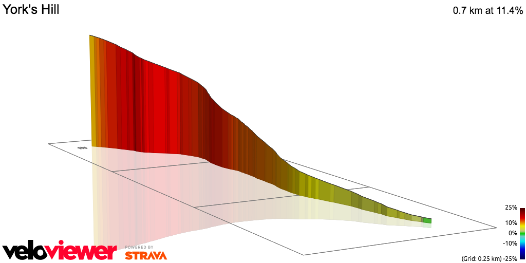 3D Elevation profile image for OFFICIAL 100Climbs No15 York's Hill