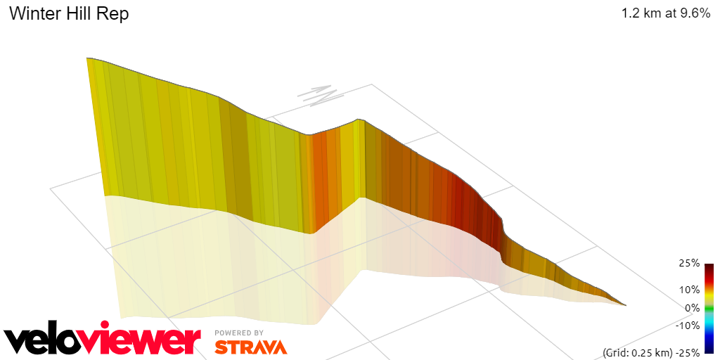 3D Elevation profile image for Winter Hill Rep